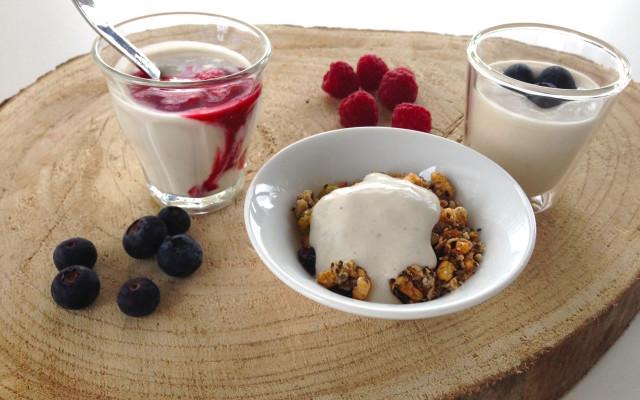 Homemade zuivelvrije yoghurt